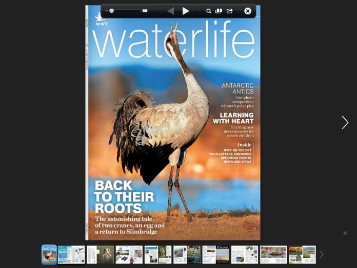 waterlife-online