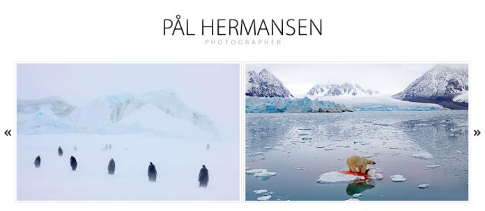 palhermansen-homepage